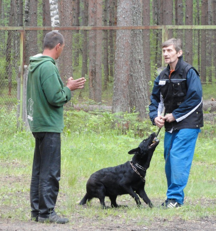 Валера, Олег и Лекса