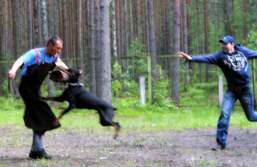 Валера, Миша (Мурманск) и Одри