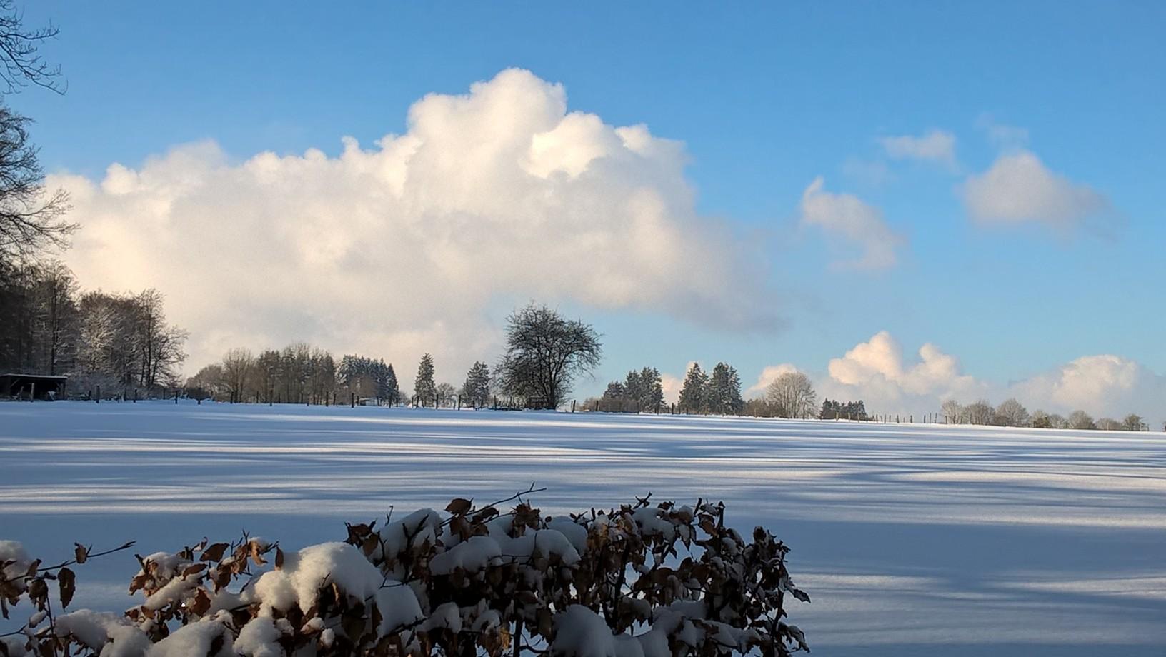 Winterlicher Ausblick von der Terrasse der Ferienwohnung  |  Uitzicht vanaf het terras in de winter