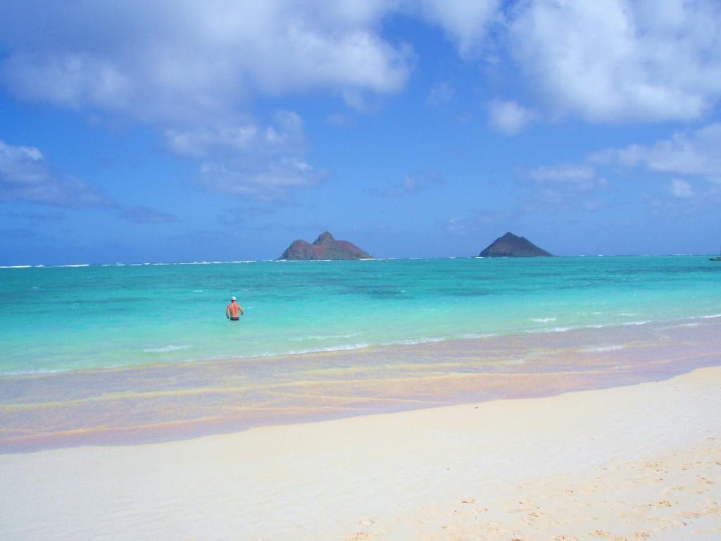 ハワイの風を感じて