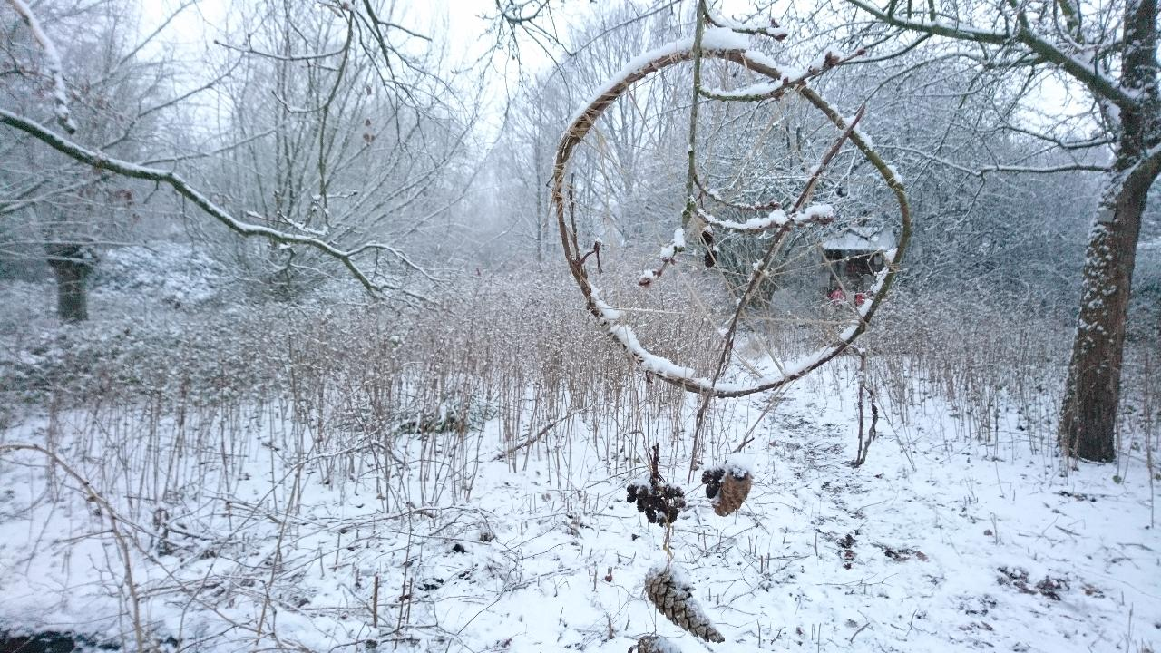 Foto: C.Seidel   -Winter in der Öko-Zelle-