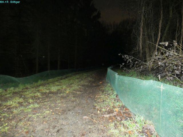 Amphibienschutzzaun entlang des Reitweges....