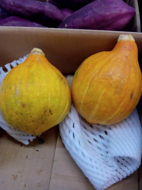 私これはコリンキーって言うかぼちゃの一種らしいです。ご長男の染谷博之さんはお嫁さん募集中です(((o(*゚▽゚*)o)))何でかは知らないんこれは、青果組合、蔬菜組合ではなく関連卸商組合に一店舗八百屋さんがあるんです(๑ŐдŐ)b旬の野菜や変わった野菜いっぱい揃っております♥