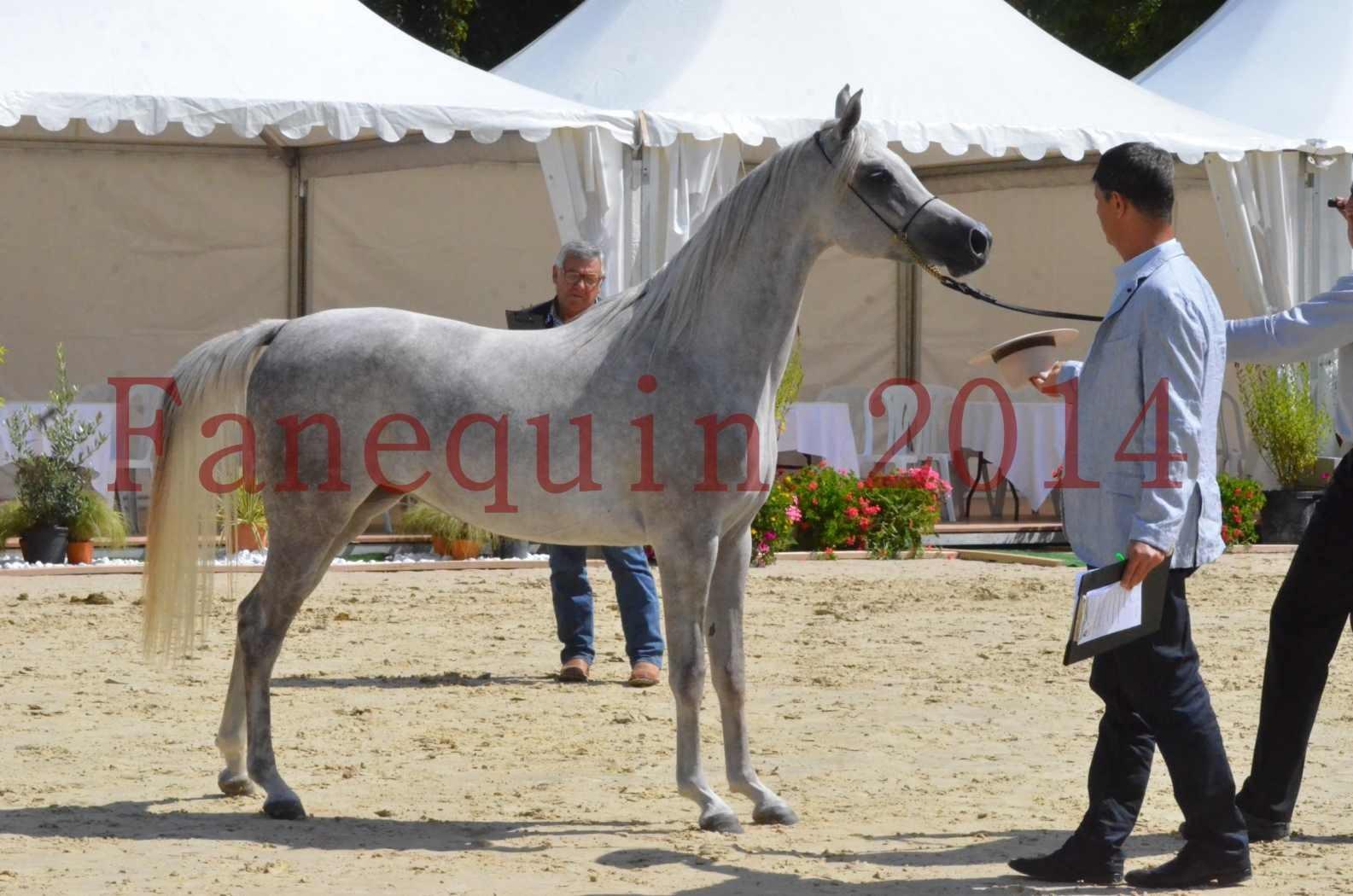 Championnat de FRANCE 2014 - Amateurs - VOLODIA DE LAFON - 057