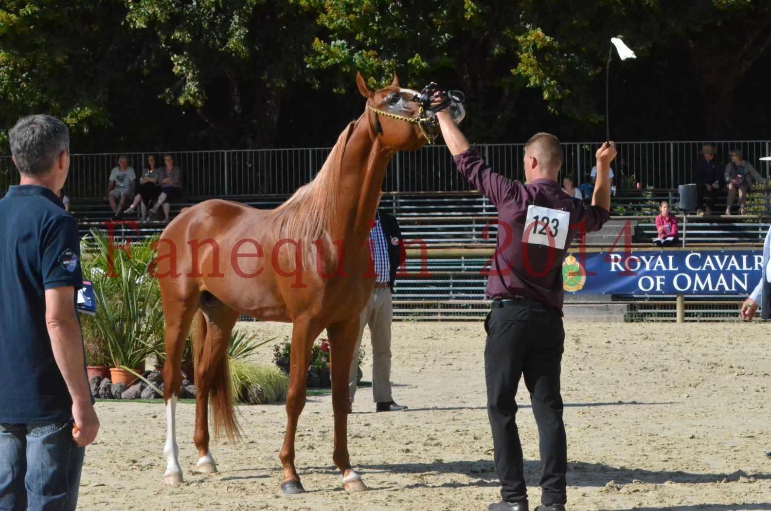 Championnat de FRANCE 2014 - Amateurs - SELECTO IBN SAMAWI - 070