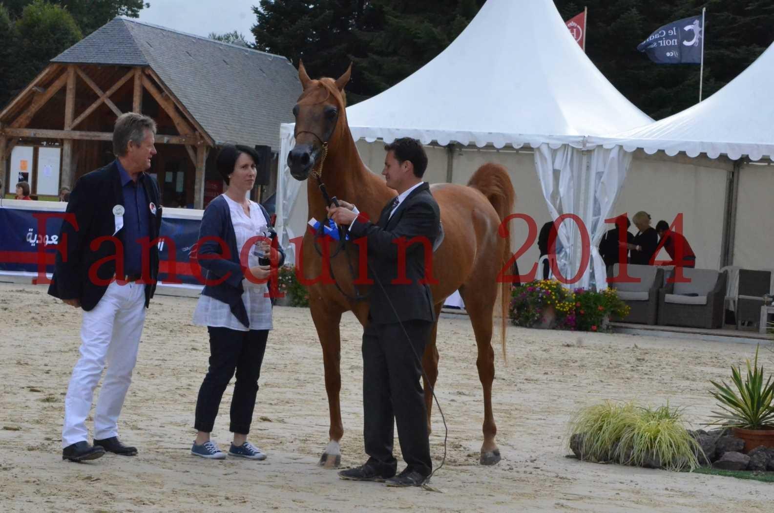 CHAMPIONNAT DE FRANCE 2014 A POMPADOUR - Sélection - LUTFINAH JA - 46