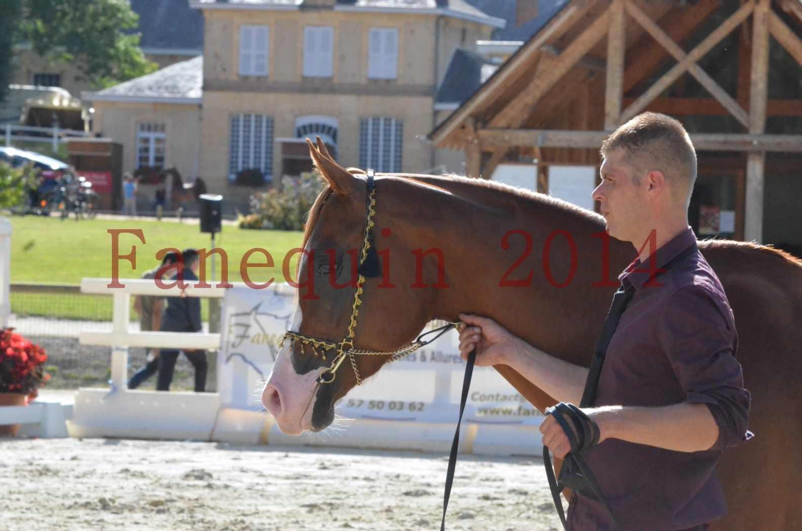 Championnat de FRANCE 2014 - Amateurs - SELECTO IBN SAMAWI - 112