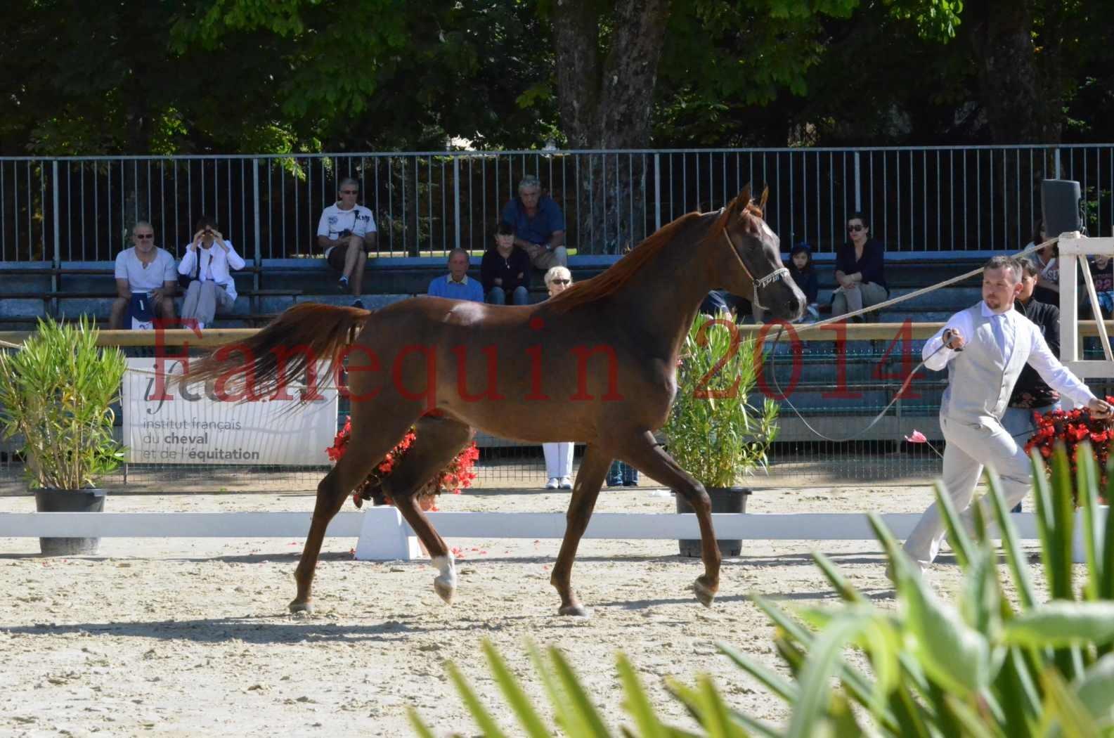 Championnat de FRANCE 2014 - Amateurs - LAMAL - 30