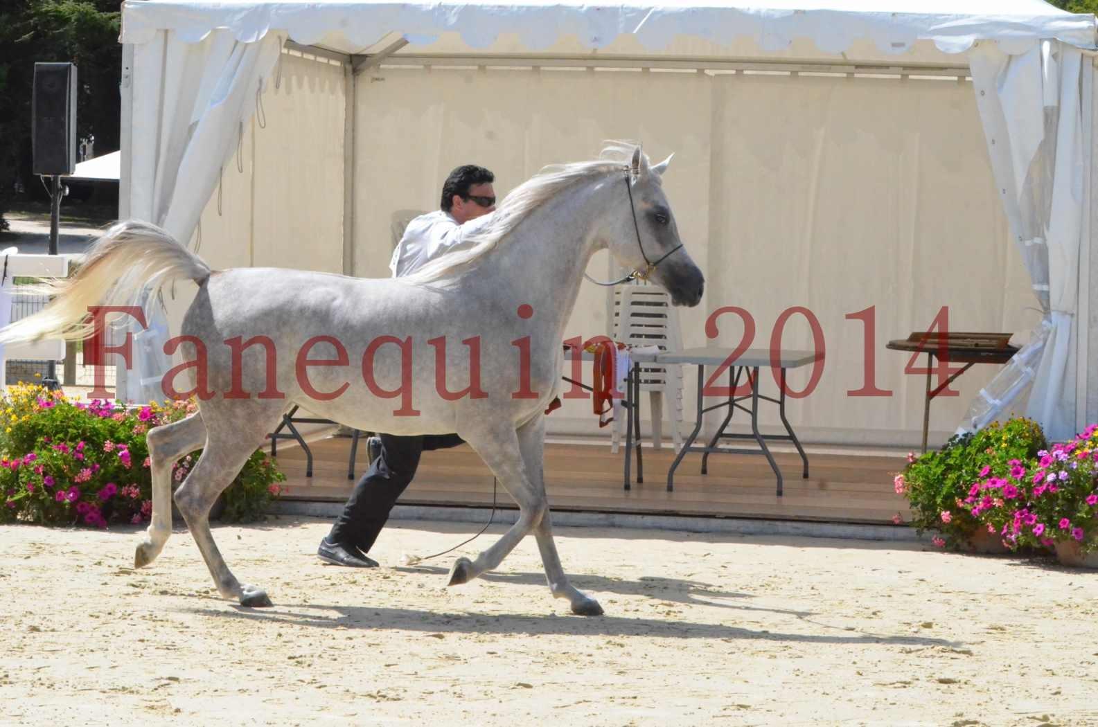 Championnat de FRANCE 2014 - Amateurs - VOLODIA DE LAFON - 028