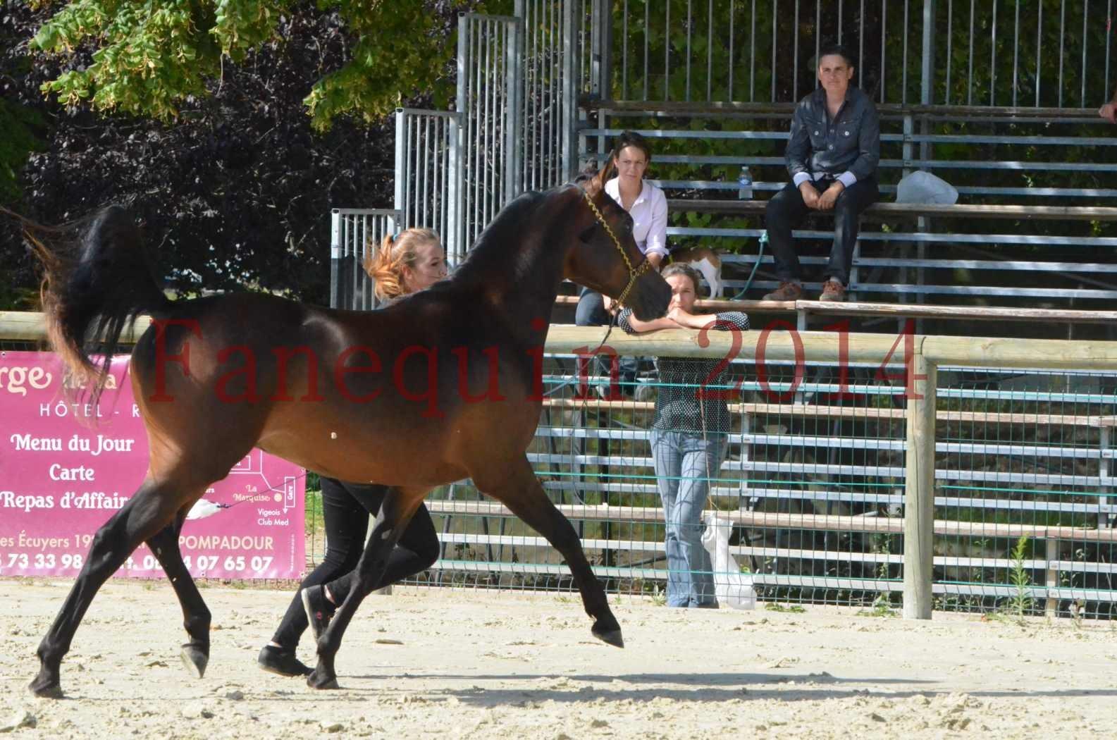 Championnat de FRANCE 2014 - Amateurs - JA KHALEB - 21