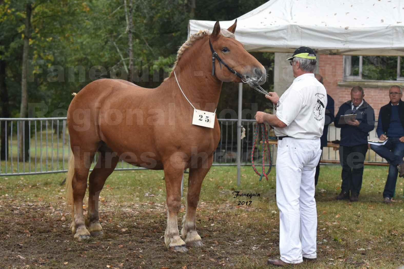 Concours Régional de chevaux de traits en 2017 - Trait COMTOIS  - EGLANTINE DE BENS - 01