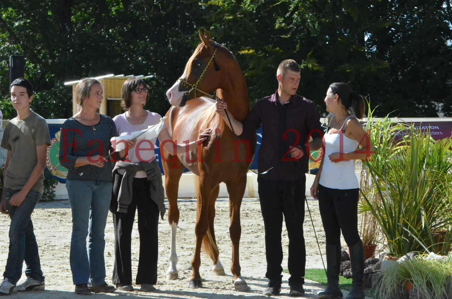 Championnat de FRANCE 2014 - Amateurs - SELECTO IBN SAMAWI - 088