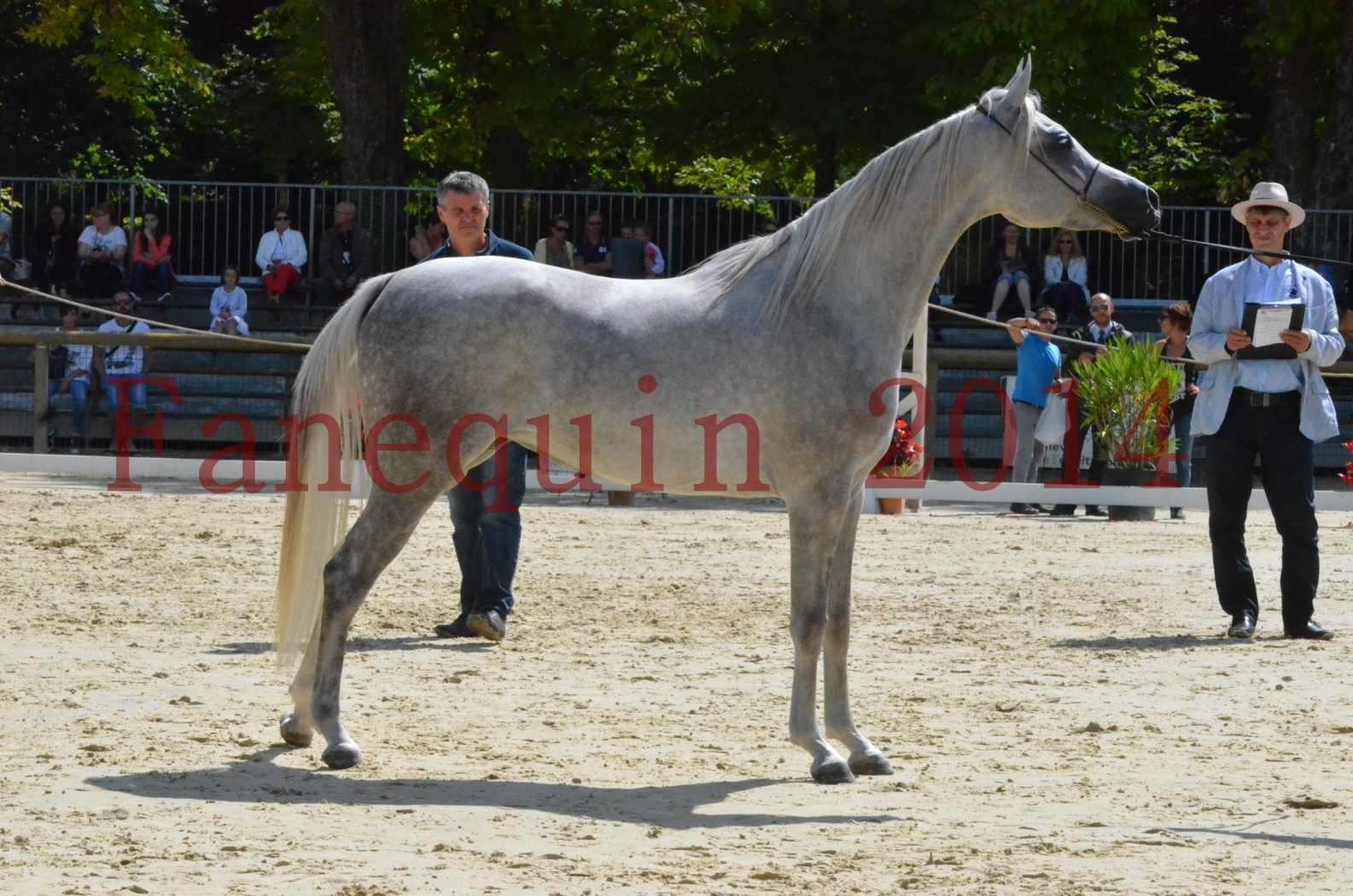 Championnat de FRANCE 2014 - Amateurs - VOLODIA DE LAFON - 077