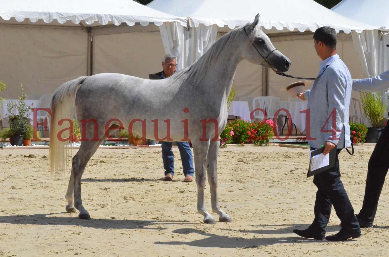 Championnat de FRANCE 2014 - Amateurs - VOLODIA DE LAFON - 059