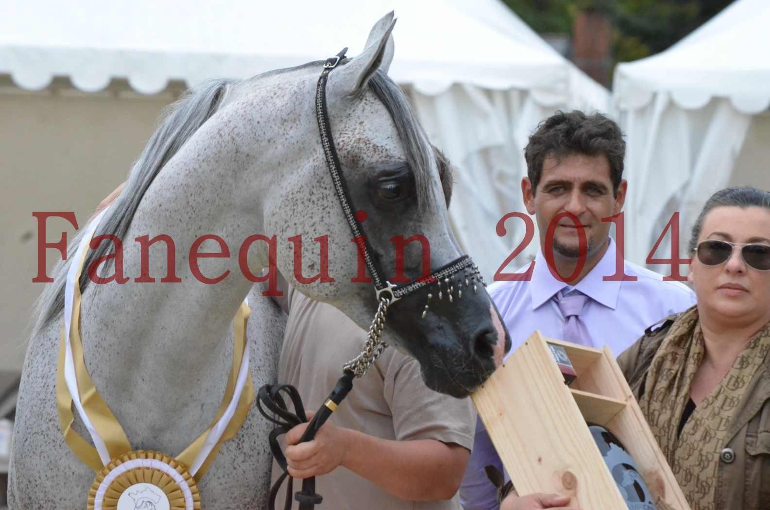 CHAMPIONNAT DE FRANCE  2014 A POMPADOUR - Championnat - SHEYK DE GARGASSAN - 30