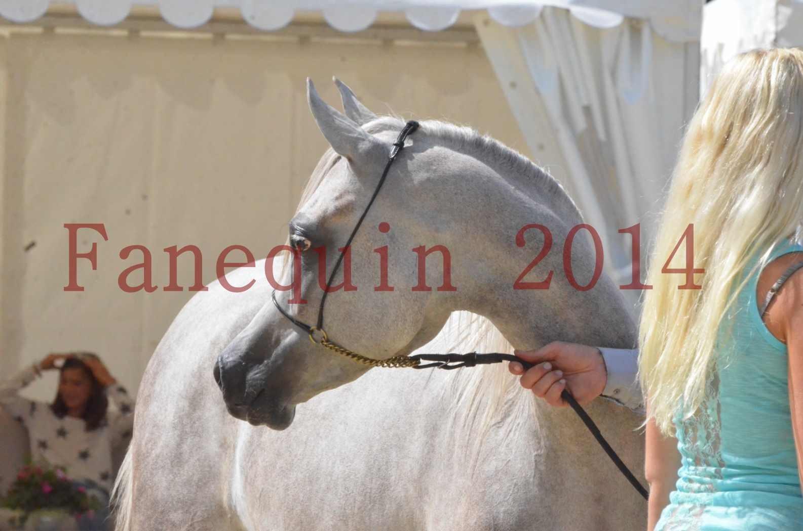 Championnat de FRANCE 2014 - Amateurs - VOLODIA DE LAFON - 092