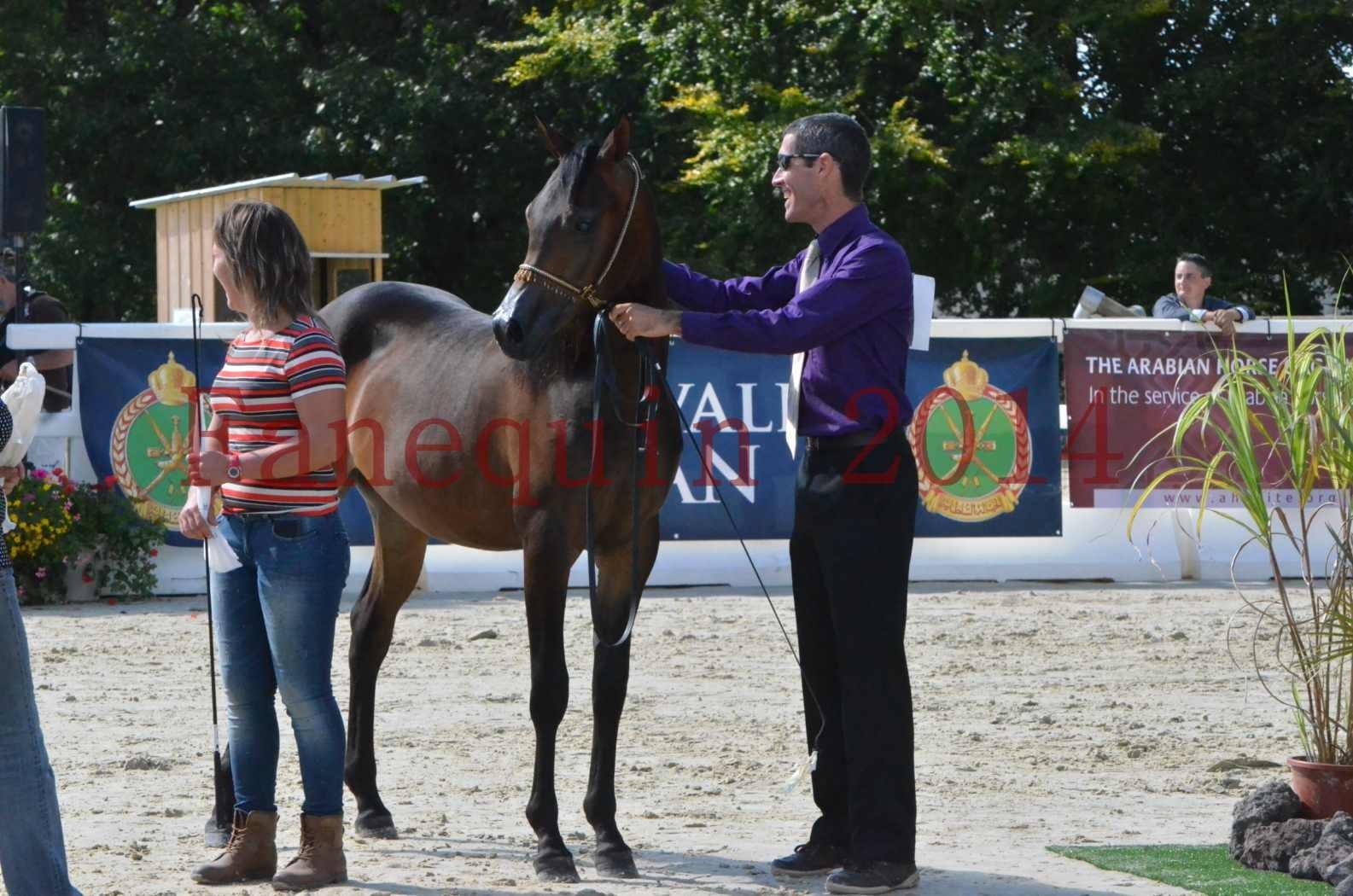 Championnat de FRANCE 2014 - Amateurs - SH FARAJAA - 51
