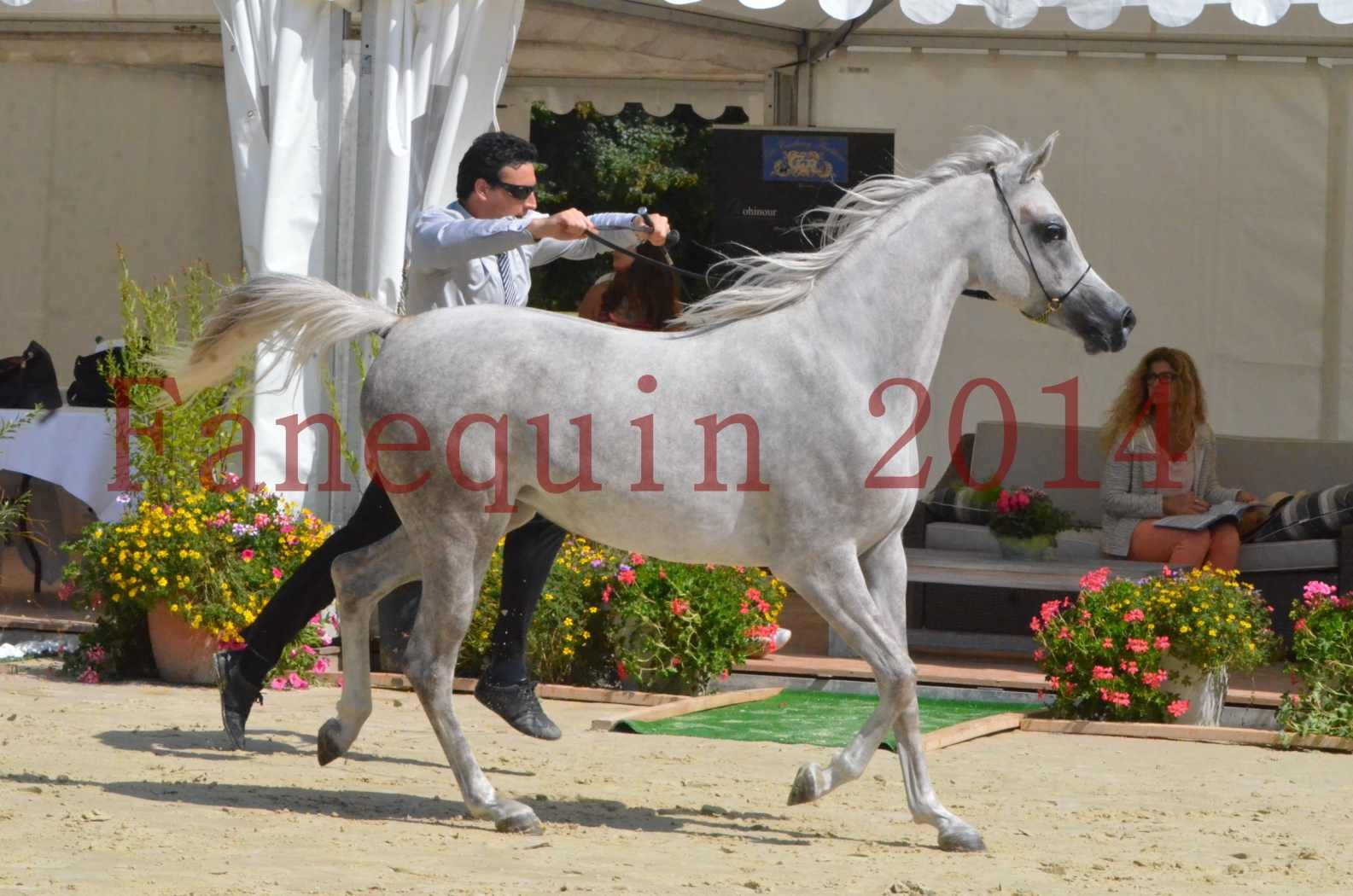Championnat de FRANCE 2014 - Amateurs - VOLODIA DE LAFON - 048