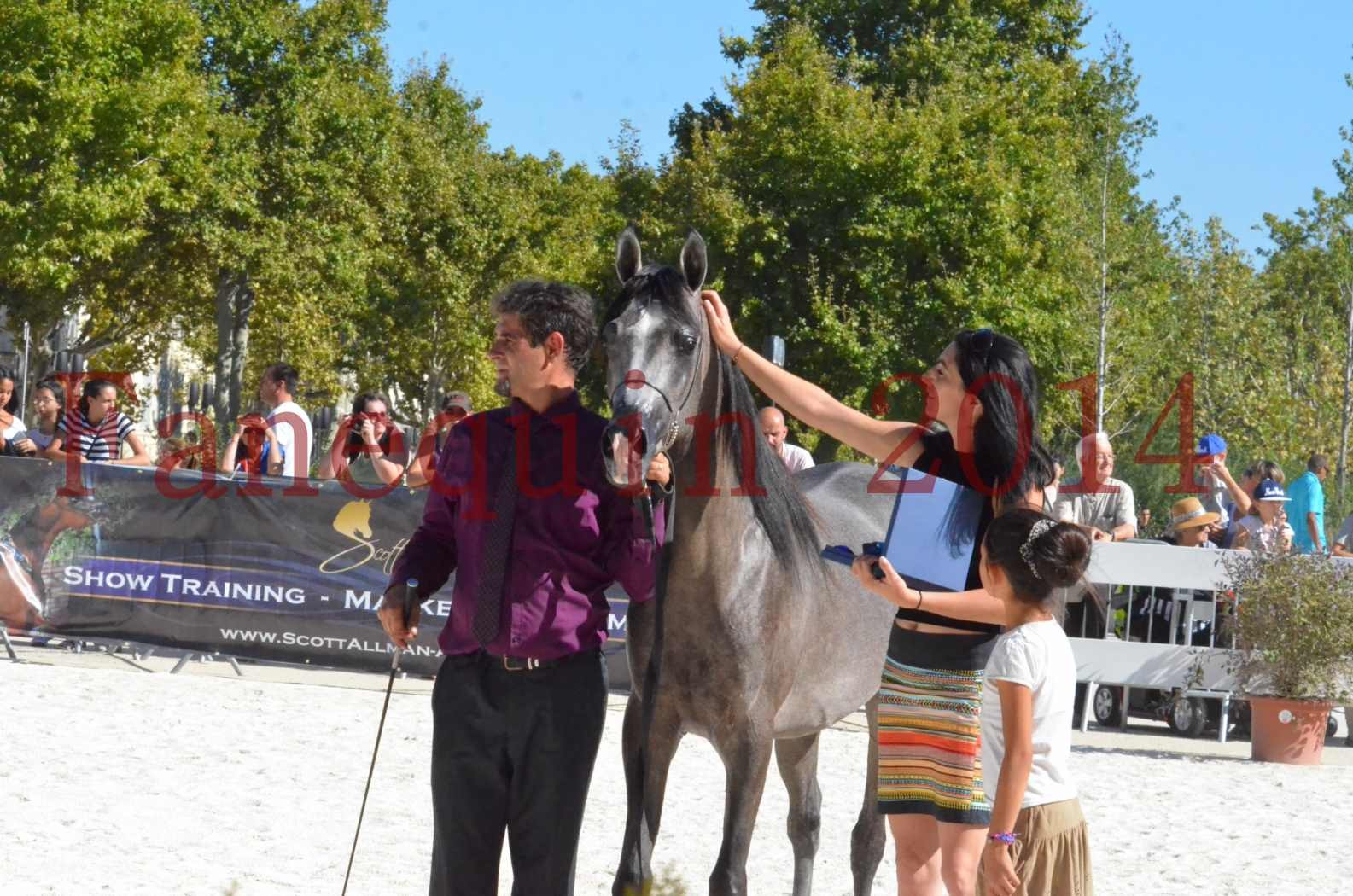 Concours National de Nîmes de chevaux ARABES 2014 - Championnat - JOSEPH'S BOUZIOLS - S 20