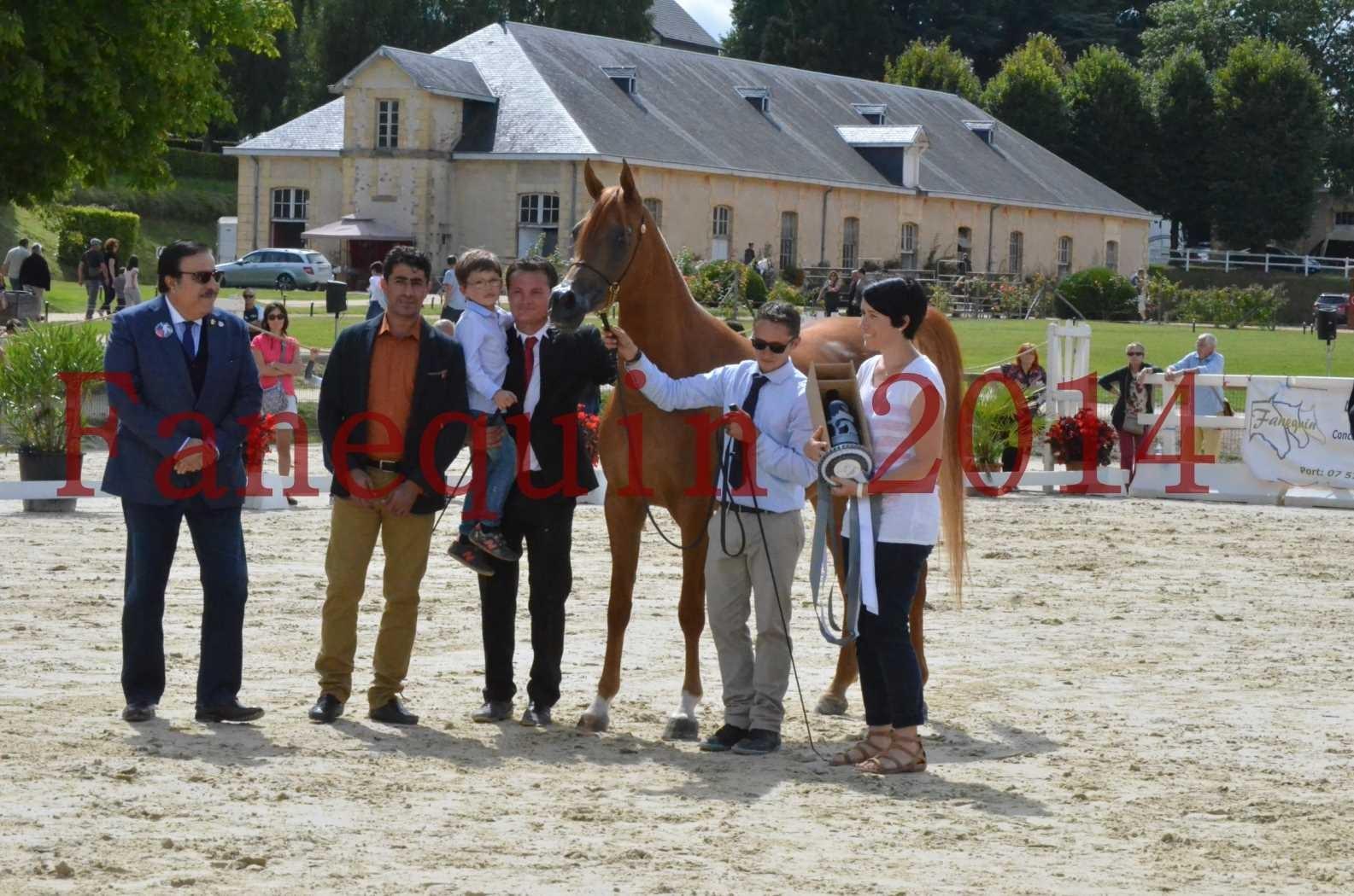 CHAMPIONNAT DE FRANCE 2014 A POMPADOUR - Championnat - LUTFINAH JA - 62