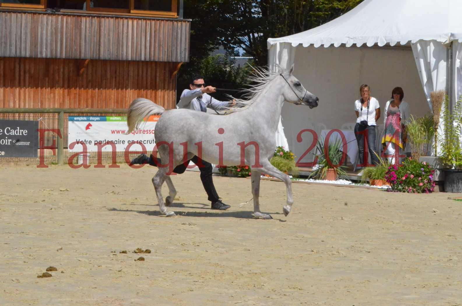 Championnat de FRANCE 2014 - Amateurs - VOLODIA DE LAFON - 040