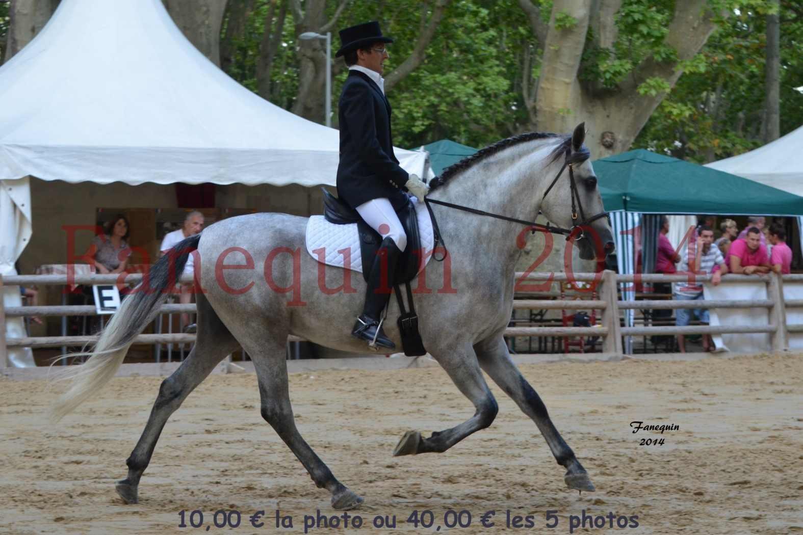 Championnat de FRANCE de PRE-présentation montés-04