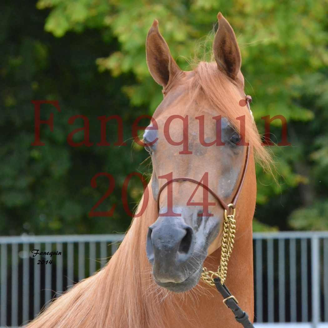 CHAMPIONNAT DE FRANCE 2014 A POMPADOUR - Notre Sélection - Portraits - LUTFINAH JA - 02