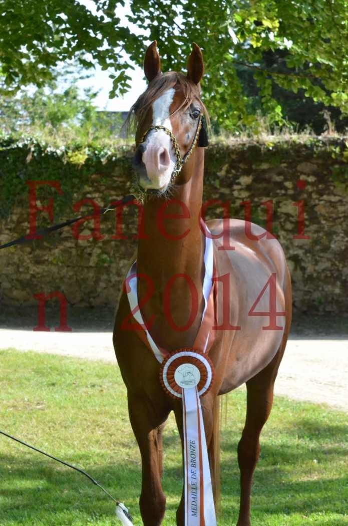 Championnat de FRANCE 2014 - Amateurs - SELECTO IBN SAMAWI - 171