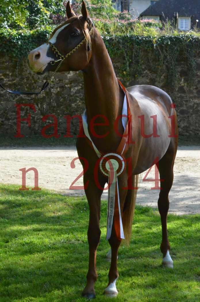 Championnat de FRANCE 2014 - Amateurs - SELECTO IBN SAMAWI - 179