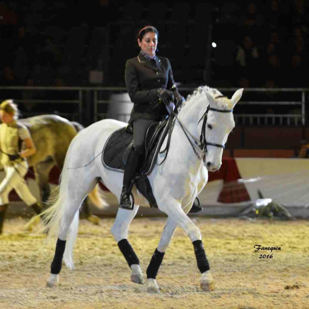 Cheval Passion 2016 - Présentation des LUSITANIENS - Ecurie de Max VENDRELL & Corinne BOUCHITTE - 47