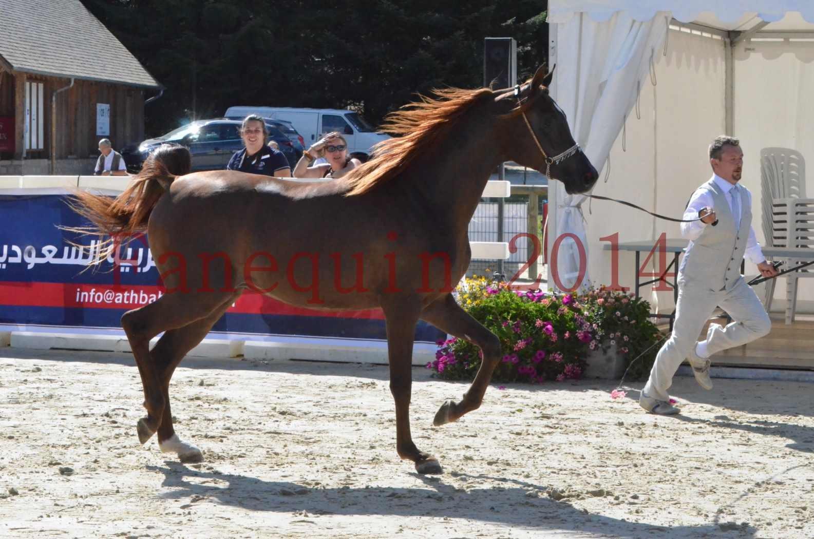 Championnat de FRANCE 2014 - Amateurs - LAMAL - 12