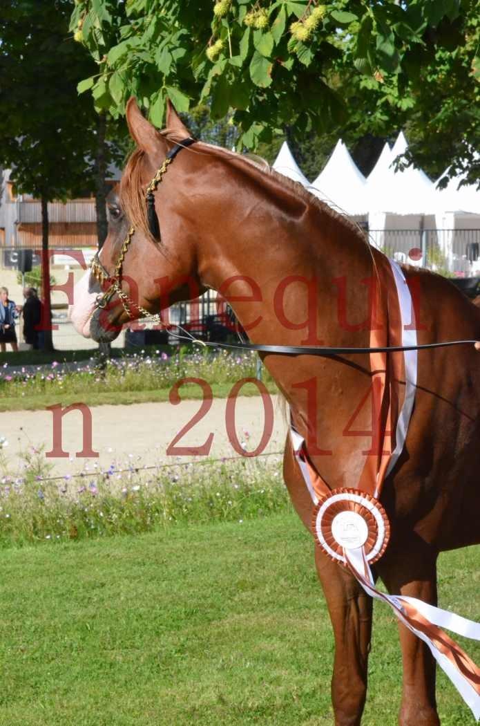 Championnat de FRANCE 2014 - Amateurs - SELECTO IBN SAMAWI - 197