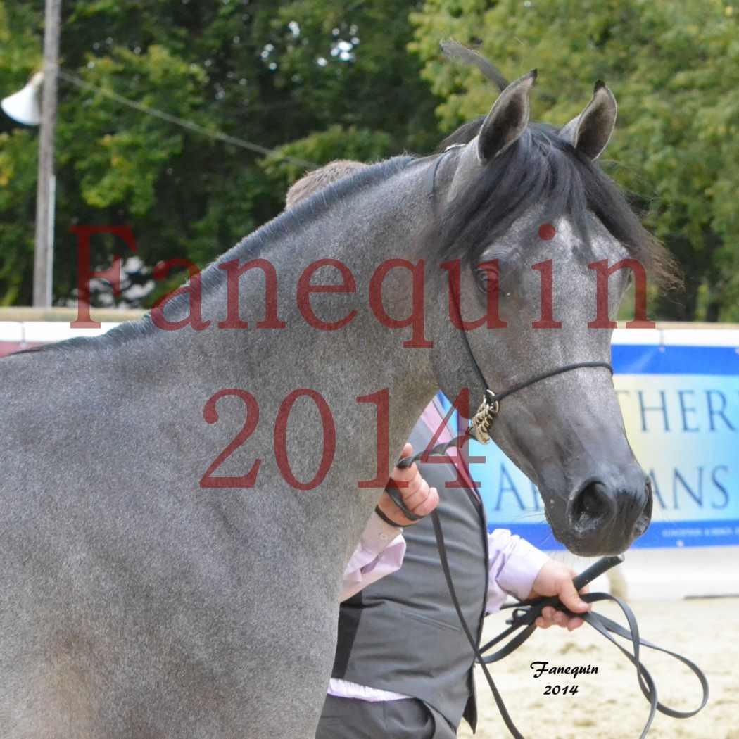 CHAMPIONNAT DE FRANCE 2014 A POMPADOUR - Notre Sélection - Portraits - AL MINYA - 2