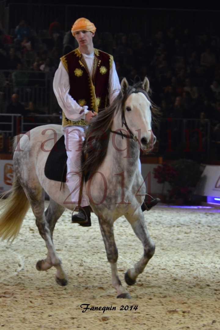 Show des races - Chevaux BARBE 25