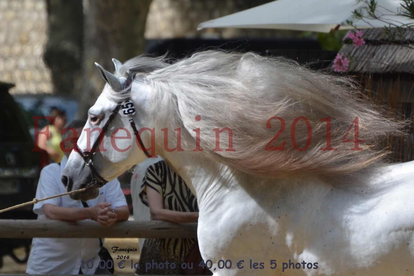 Championnat de FRANCE de PRE-PORTRAITS-08