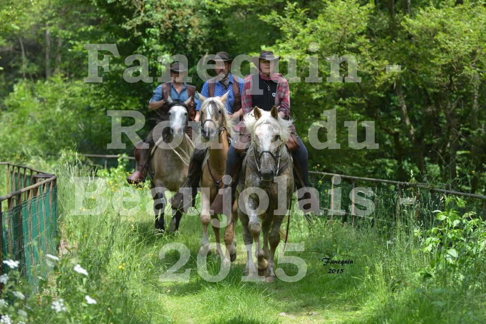 Route du Beaujolais 2015 - plusieurs cavaliers - samedi après midi - 2