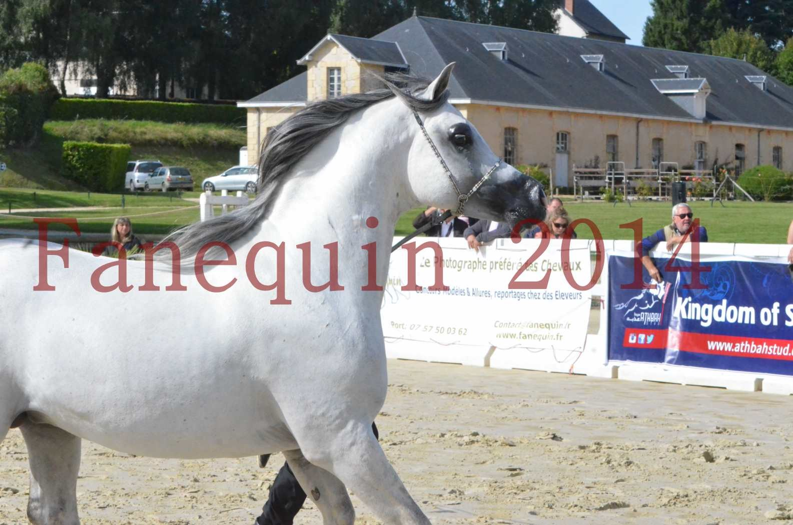 CHAMPIONNAT DE FRANCE  2014 A POMPADOUR - Sélection - SHAOLIN DE NEDJAIA - 07