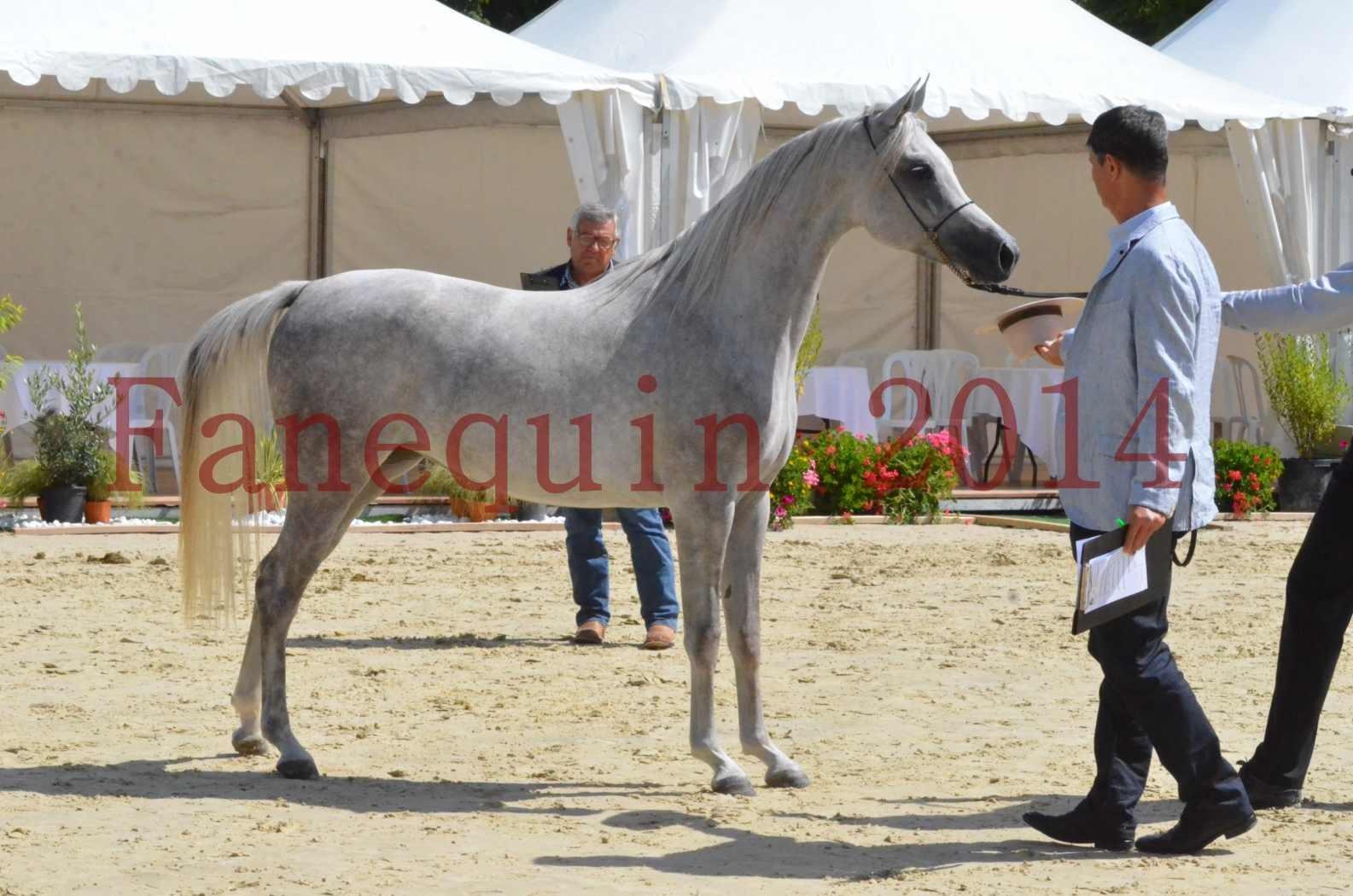 Championnat de FRANCE 2014 - Amateurs - VOLODIA DE LAFON - 060