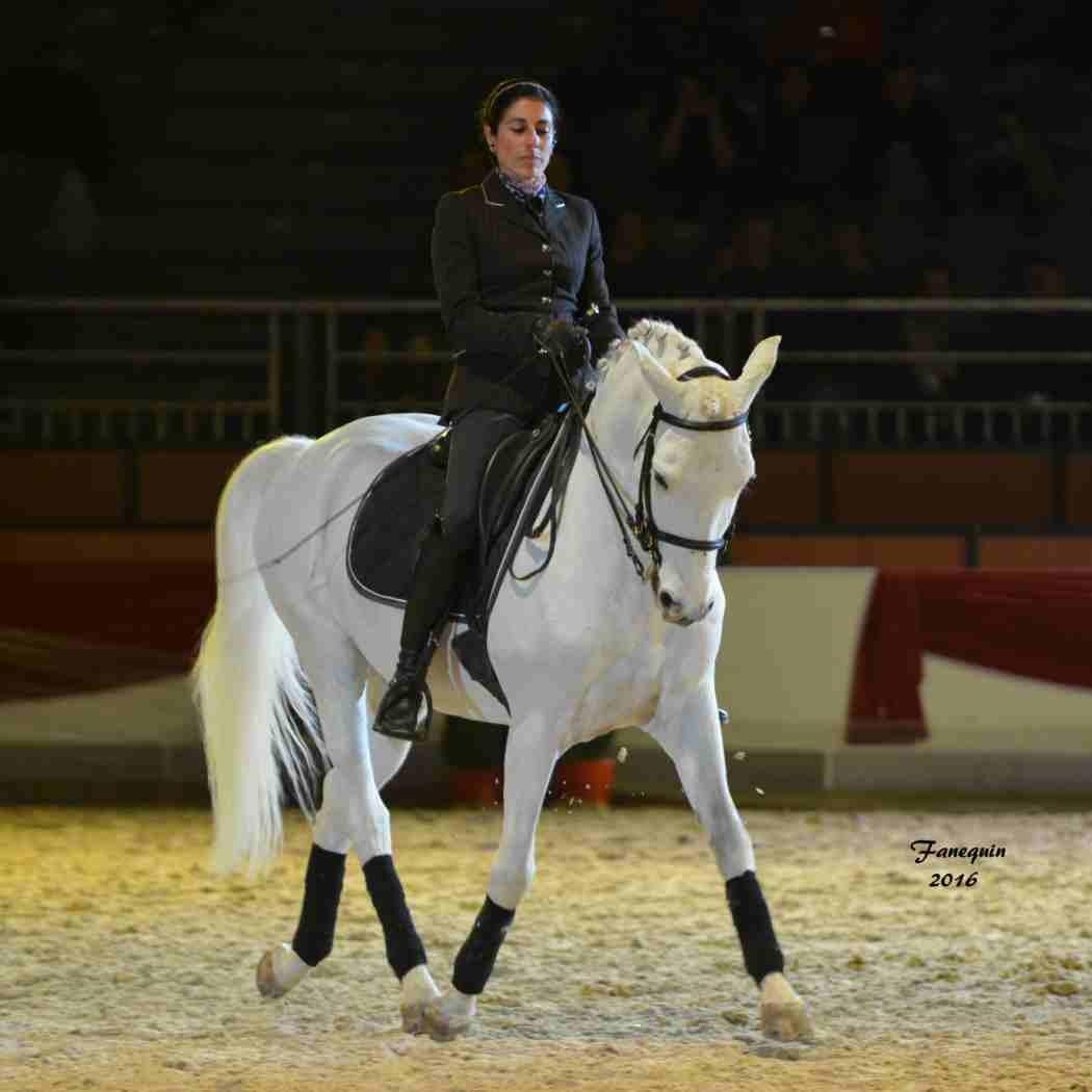 Cheval Passion 2016 - Présentation des LUSITANIENS - Ecurie de Max VENDRELL & Corinne BOUCHITTE - 44