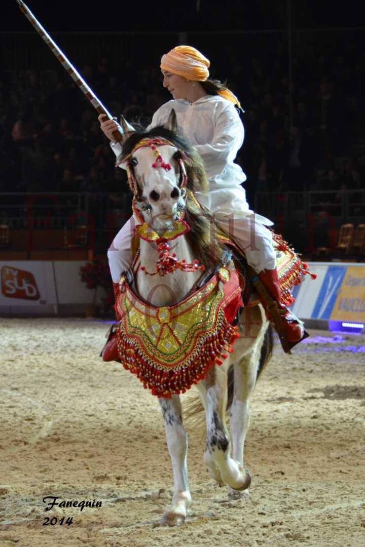 Show des races - Chevaux BARBE 34