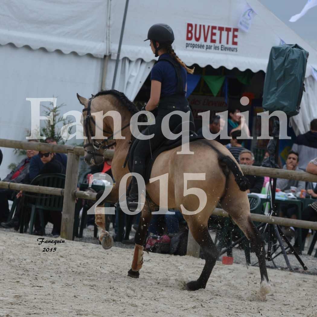 Salon Equitaine de Bordeaux 2015 - concours Equitation de travail