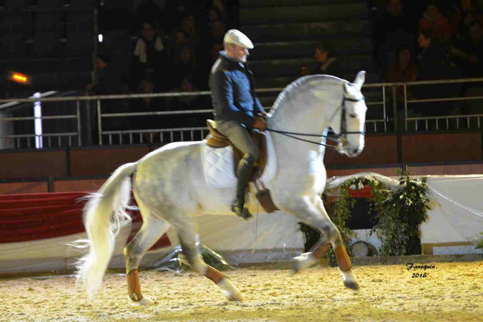 Cheval Passion 2016 - Présentation des LUSITANIENS - Ecurie de Max VENDRELL & Corinne BOUCHITTE - 33