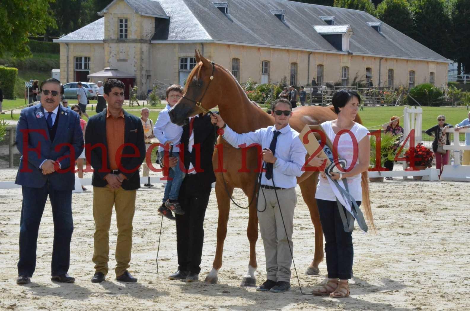 CHAMPIONNAT DE FRANCE 2014 A POMPADOUR - Championnat - LUTFINAH JA - 67