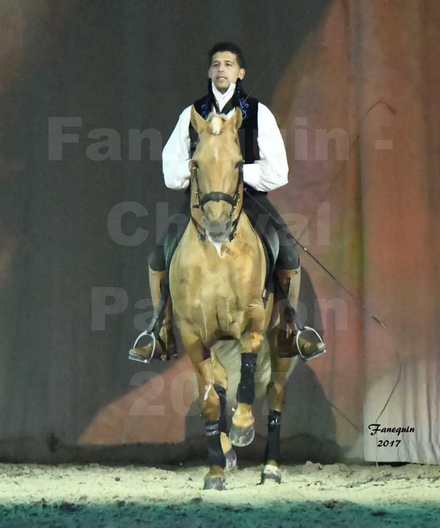 Cheval Passion 2017 - Spectacle des Crinières - GARI ZOHER