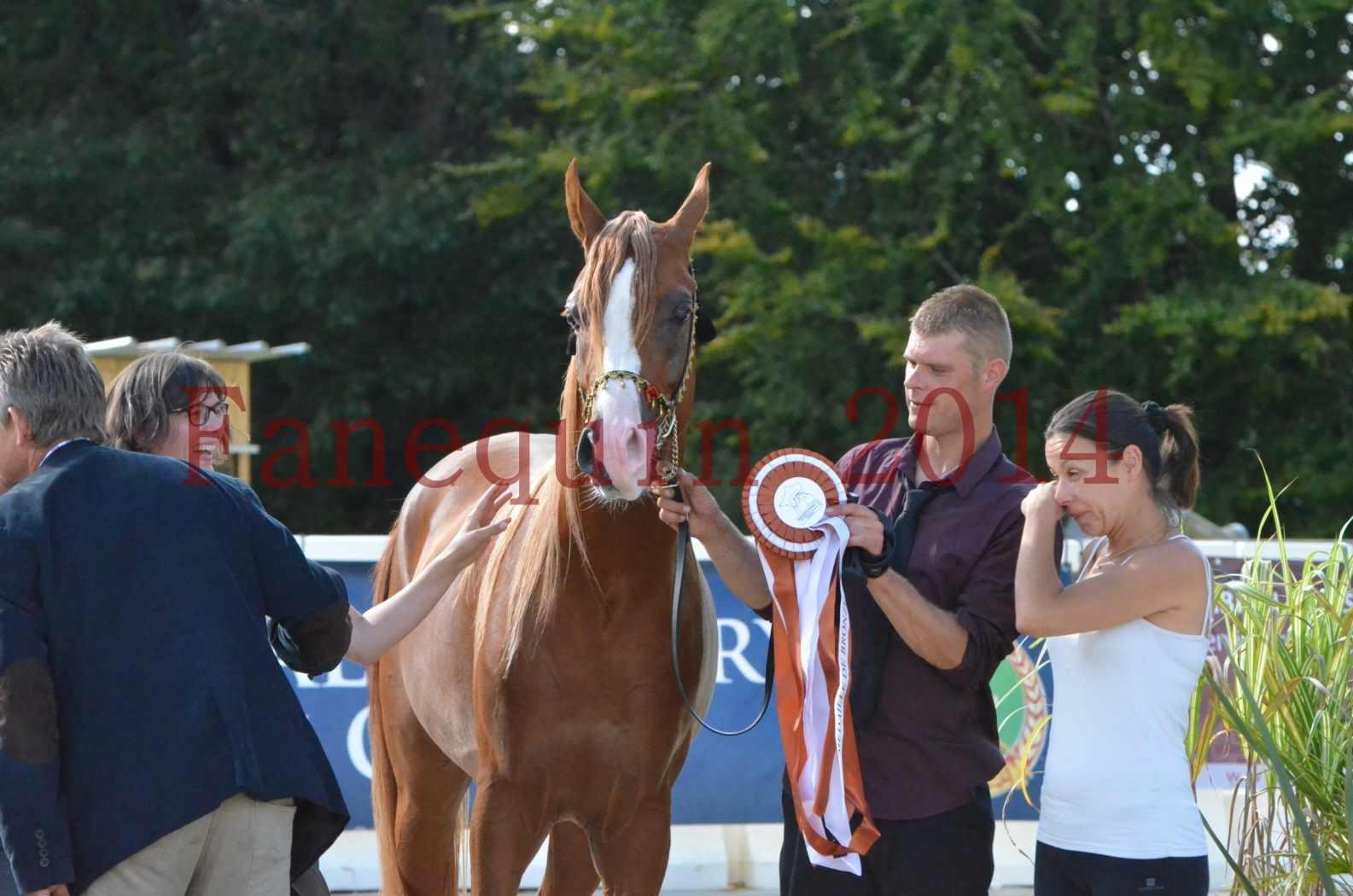 Championnat de FRANCE 2014 - Amateurs - SELECTO IBN SAMAWI - 097