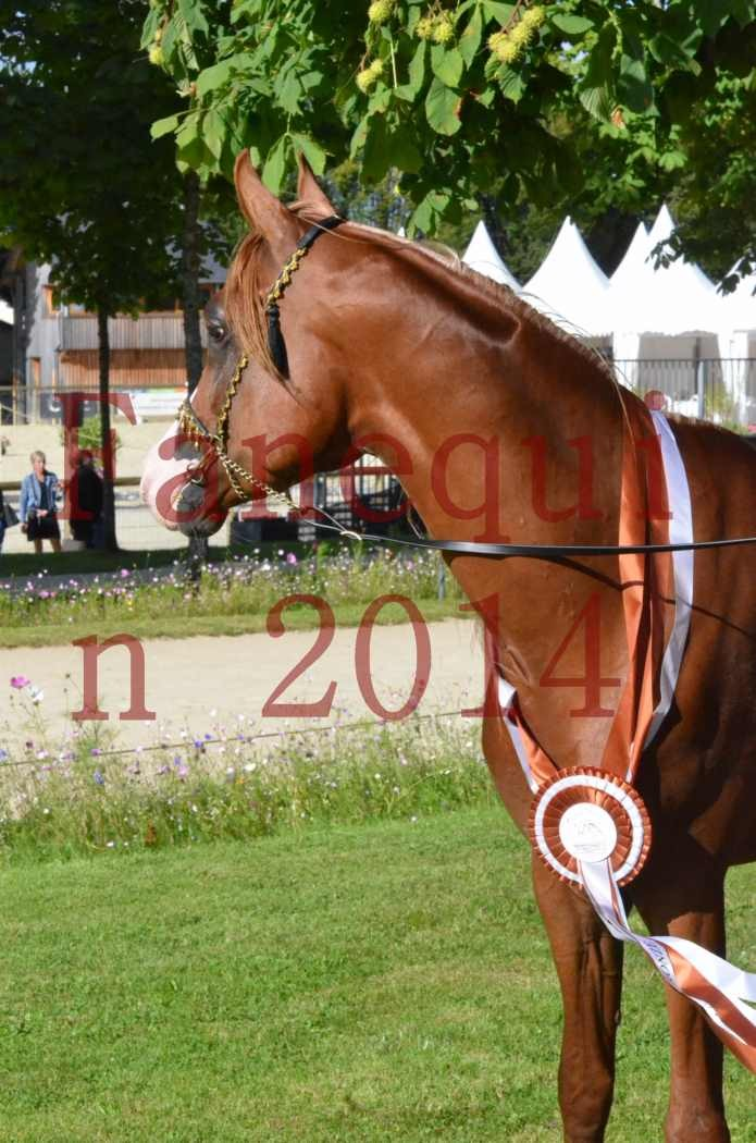 Championnat de FRANCE 2014 - Amateurs - SELECTO IBN SAMAWI - 198