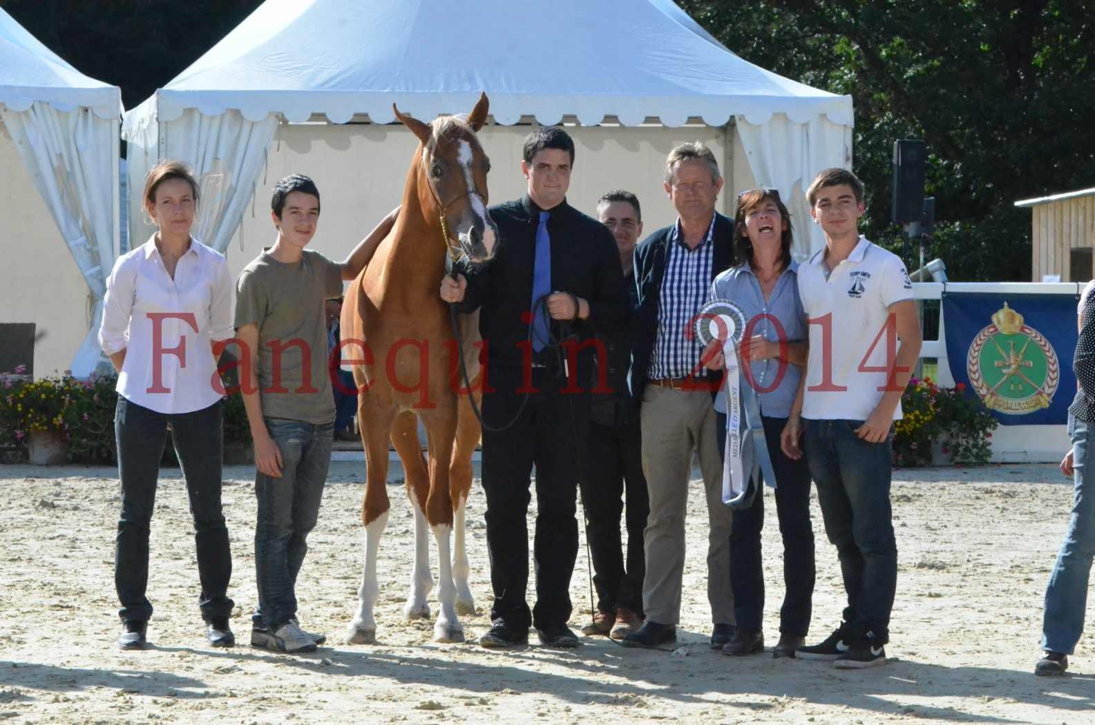 Championnat de FRANCE 2014 - Amateurs - SELECTO IBN SAMAWI - 092