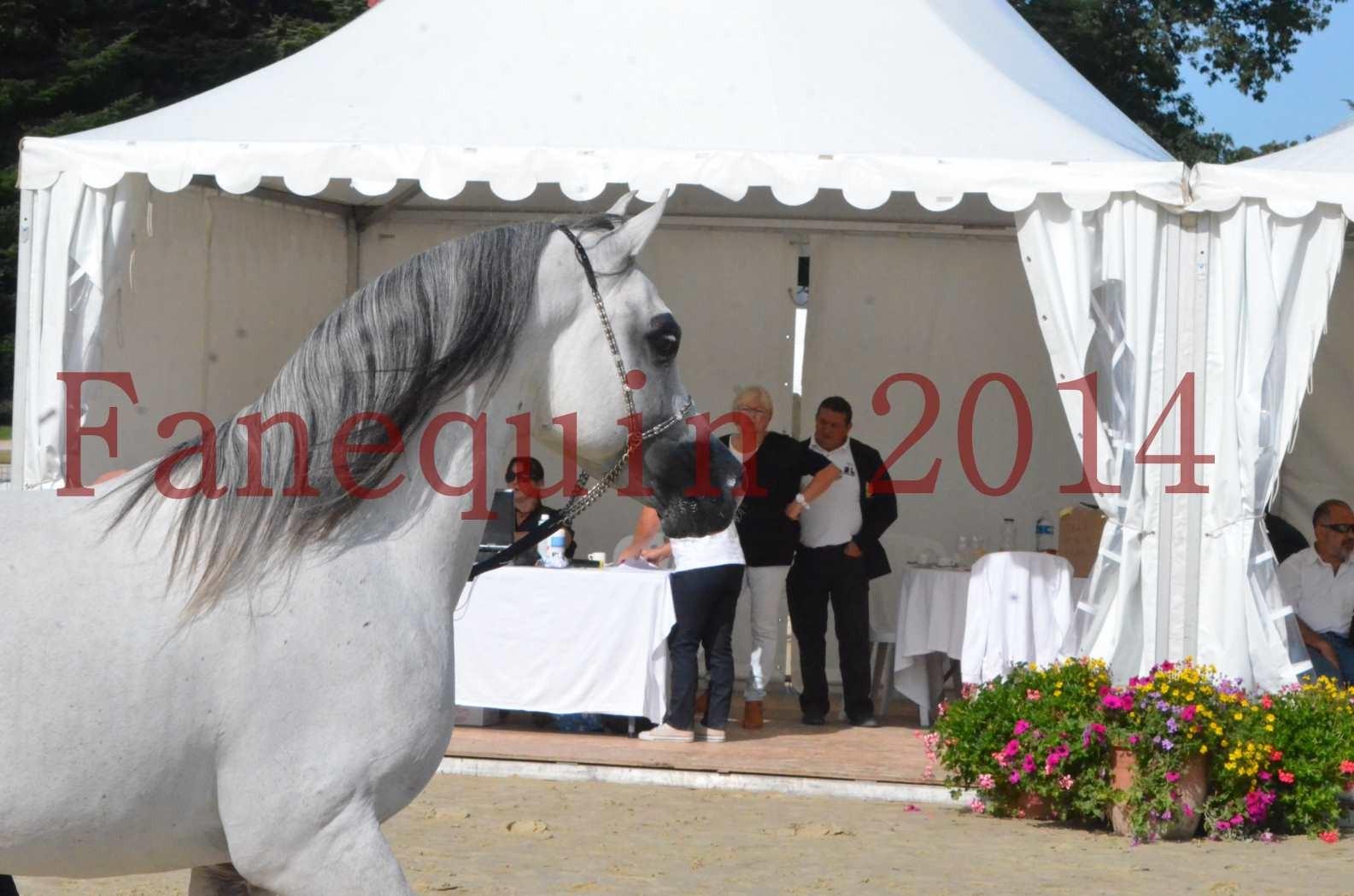 CHAMPIONNAT DE FRANCE  2014 A POMPADOUR - Sélection - SHAOLIN DE NEDJAIA - 34