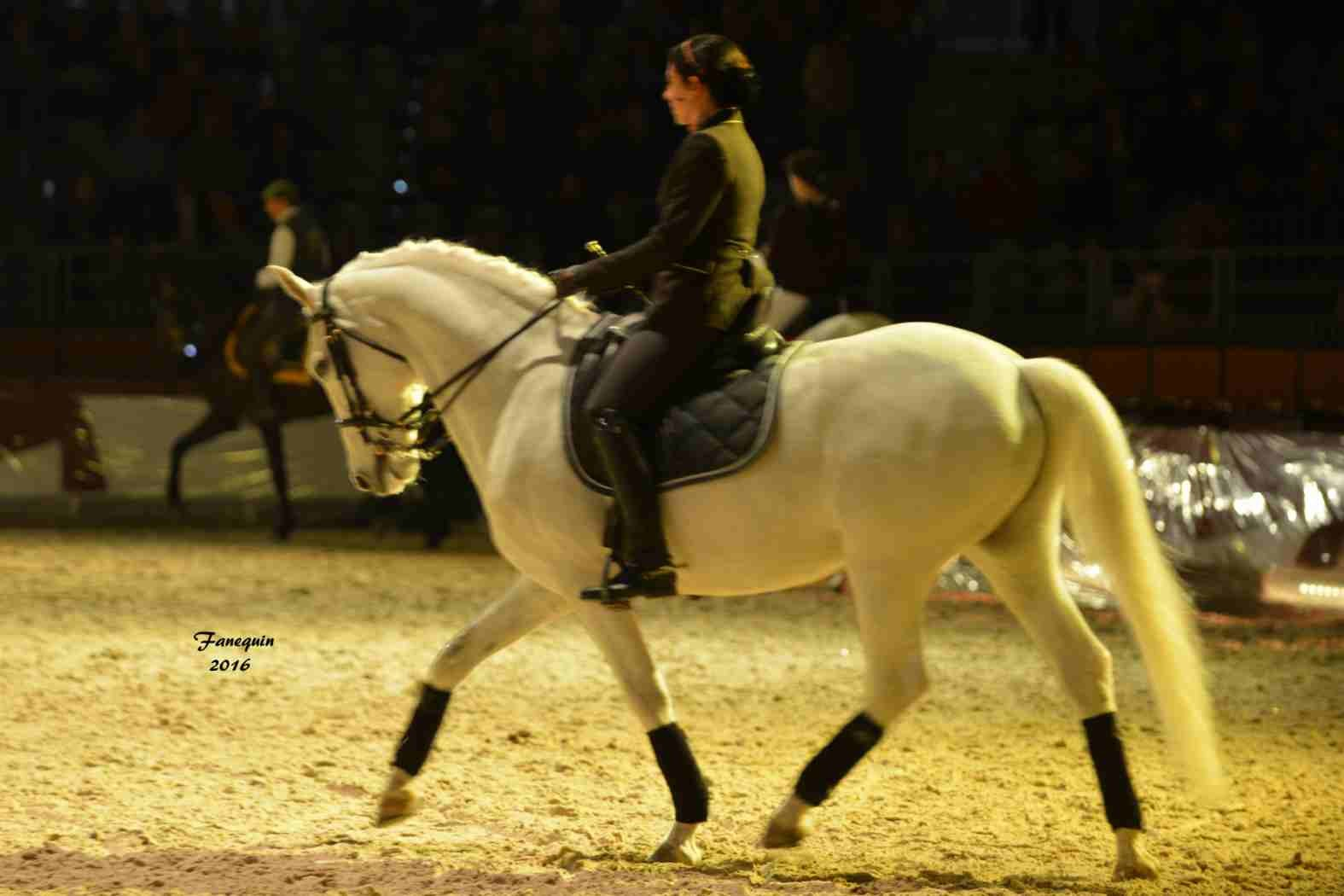 Cheval Passion 2016 - Présentation des LUSITANIENS - Ecurie de Max VENDRELL & Corinne BOUCHITTE - 41