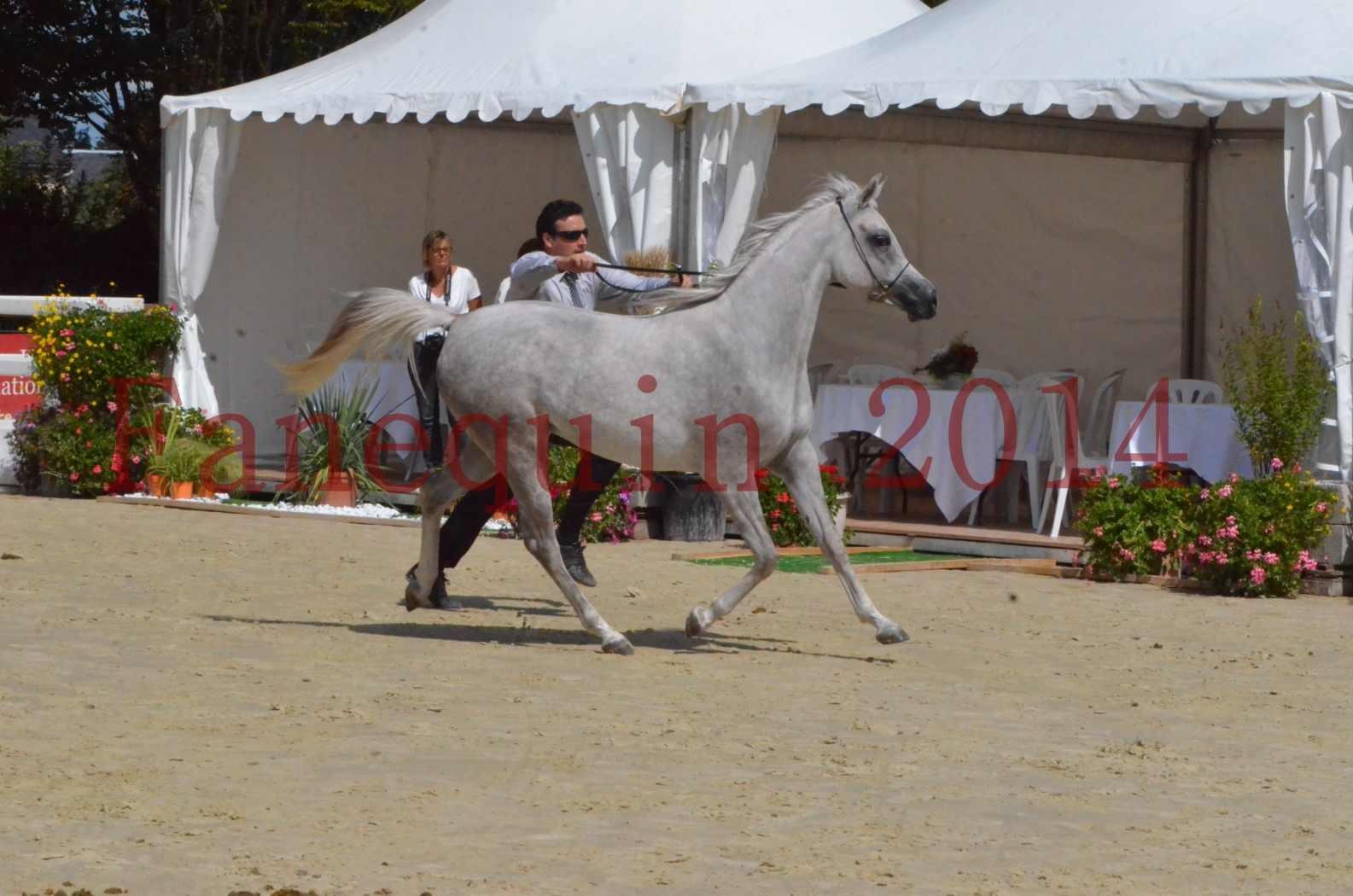 Championnat de FRANCE 2014 - Amateurs - VOLODIA DE LAFON - 043